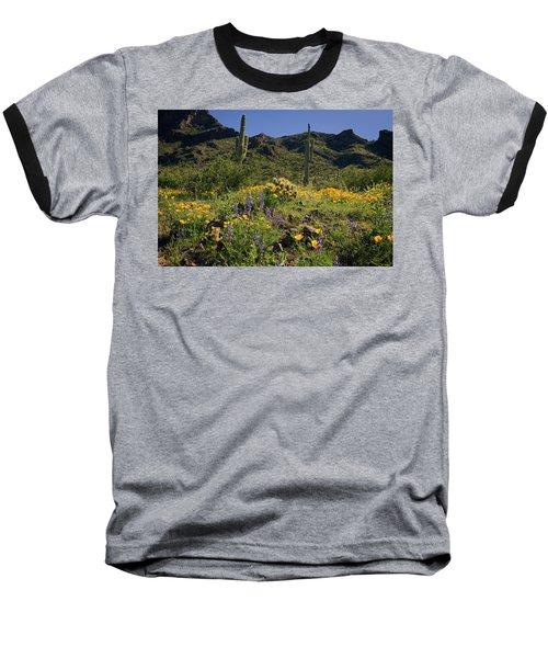 Fields Of Glory Baseball T-Shirt
