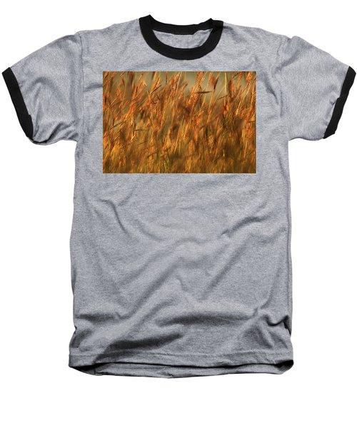 Fields Of Golden Grains Baseball T-Shirt