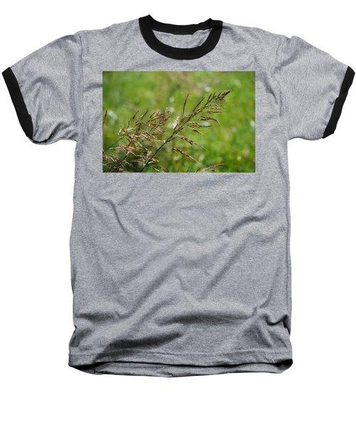 Fields Of Grain Baseball T-Shirt