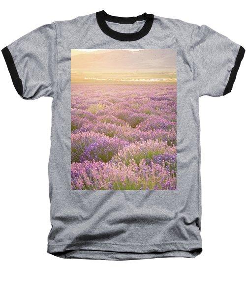 Fields Of Lavender Baseball T-Shirt