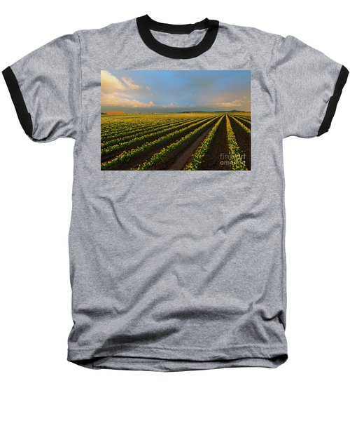 Baseball T-Shirt featuring the photograph Fields Of Yellow by Mike Dawson