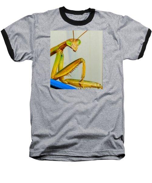 Fierce Lady Baseball T-Shirt by Bruce Carpenter