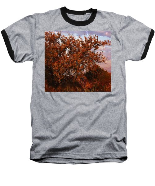 Fiery Elm Tree  Baseball T-Shirt
