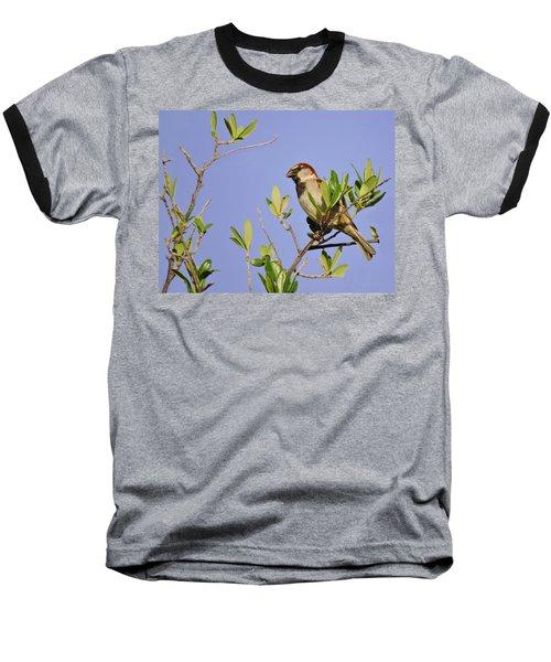 Finch Baseball T-Shirt