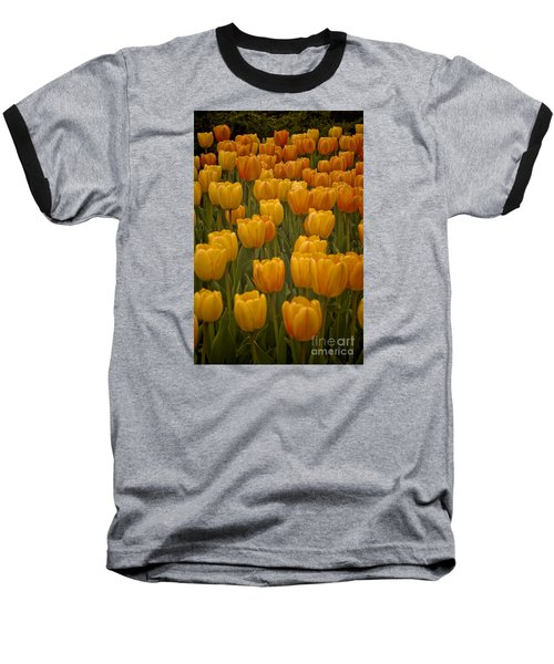 Baseball T-Shirt featuring the photograph Fine Lines In Yellow Tulips by Michael Flood