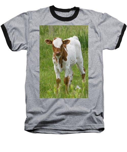 Fine Looking Longhorn Calf Baseball T-Shirt