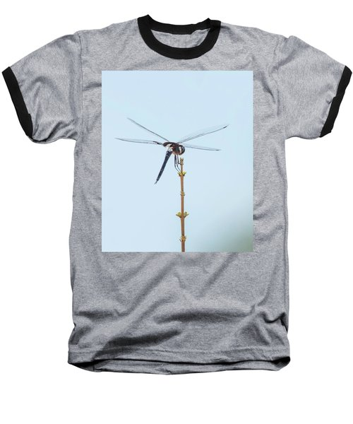 Finnon Dragonfly Baseball T-Shirt