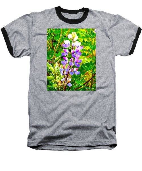 Fireweed Baseball T-Shirt