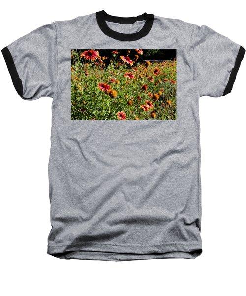 Firewheel Wildflower Baseball T-Shirt