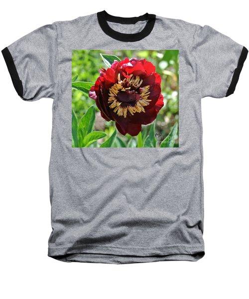First Peony Bloom Baseball T-Shirt by Marsha Heiken
