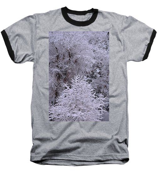First Snow I Baseball T-Shirt