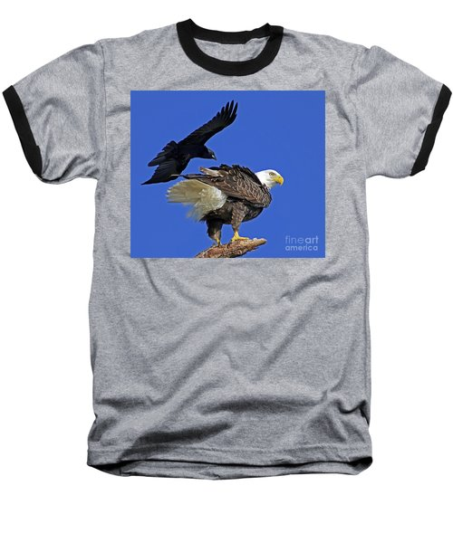 Fish Crow Dive Bombs Eagle Baseball T-Shirt