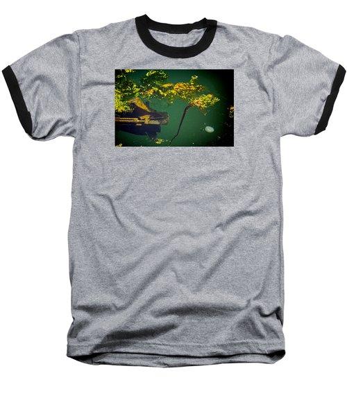 Fish Eye View Baseball T-Shirt by Dale Stillman