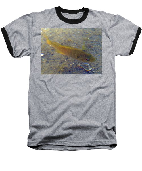 Fish Sandy Bottom Baseball T-Shirt