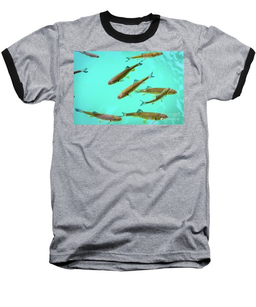 Fish School In Turquoise Lake - Plitvice Lakes National Park, Croatia Baseball T-Shirt