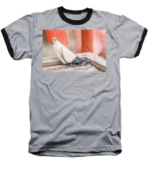 Flamingo At Sea World In Orlando Florida Baseball T-Shirt by Peter Ciro
