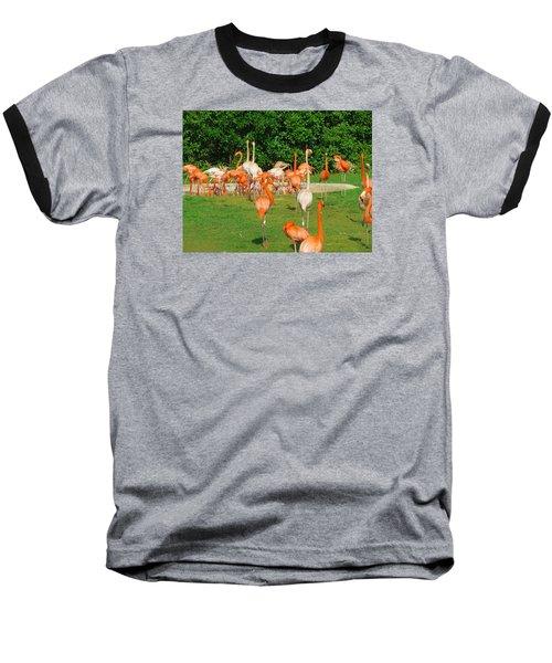 Flamingo Sunbathe Baseball T-Shirt