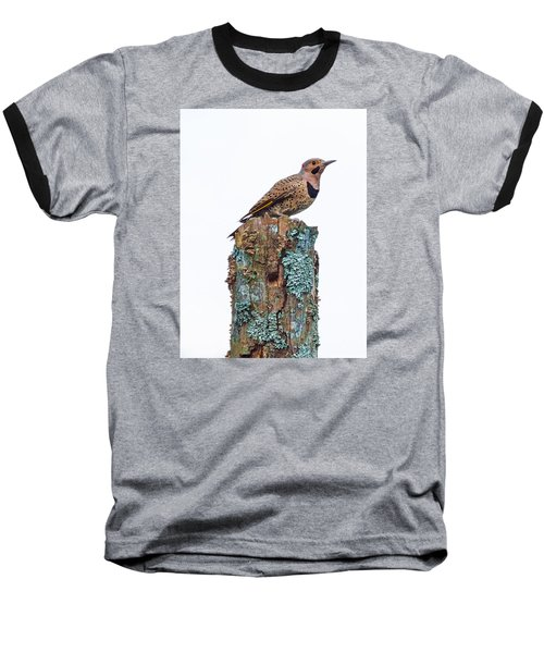 Flicker Perched On Tree Baseball T-Shirt