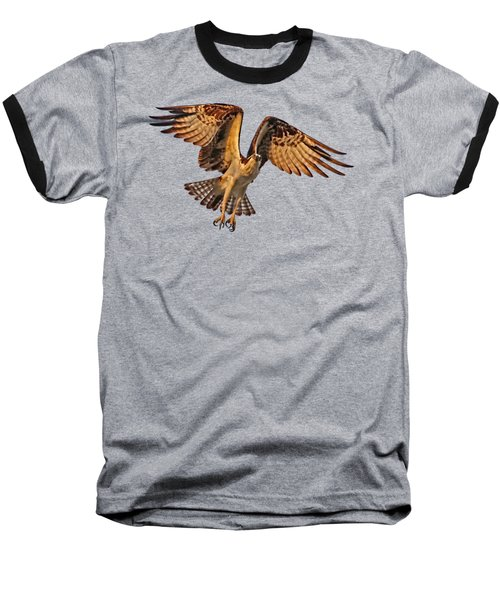 Flight Of The Osprey Baseball T-Shirt