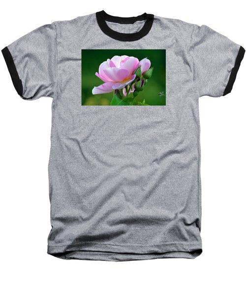 Flight Of The Pollinator. Baseball T-Shirt
