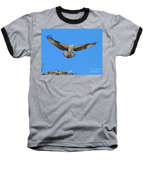 Baseball T-Shirt featuring the photograph Flight Practice Over The Nest by Debbie Stahre