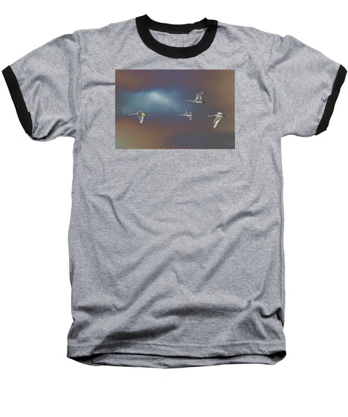 Flight Baseball T-Shirt