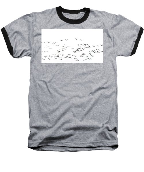 Flock Of Beautiful Migratory Lapwing Birds In Clear Winter Sky I Baseball T-Shirt