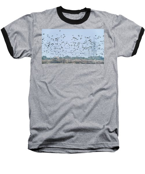 Flock Of Beautiful Migratory Lapwing Birds In Clear Winter Sky Baseball T-Shirt