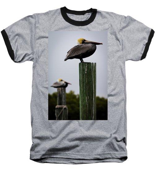 Florida Brown Pelican Baseball T-Shirt