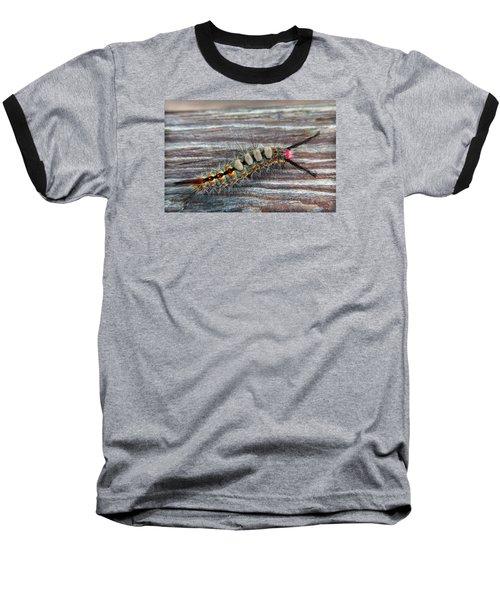 Florida Caterpillar Baseball T-Shirt by Hanny Heim
