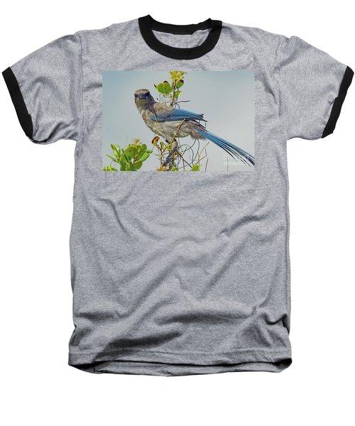 Florida Juvie Scrub Jay Baseball T-Shirt