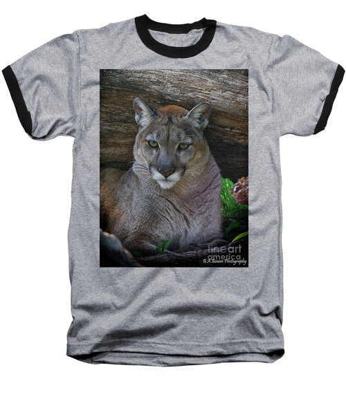 Florida Panther Baseball T-Shirt