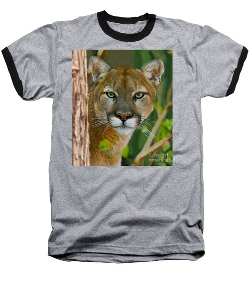 Florida Panther Baseball T-Shirt by Larry Nieland