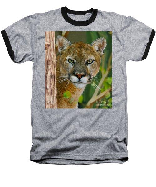 Florida Panther Baseball T-Shirt