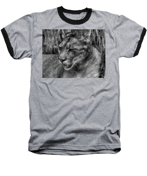 Baseball T-Shirt featuring the photograph Florida Panther by Myrna Bradshaw