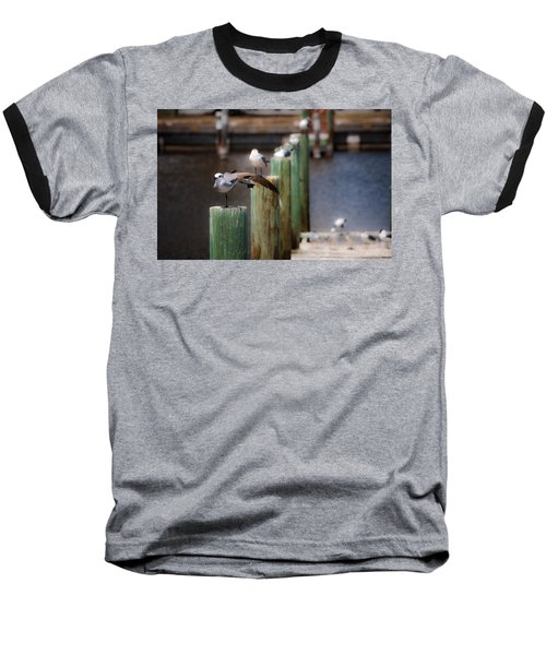 Baseball T-Shirt featuring the photograph Florida Seagull Playing by Jason Moynihan