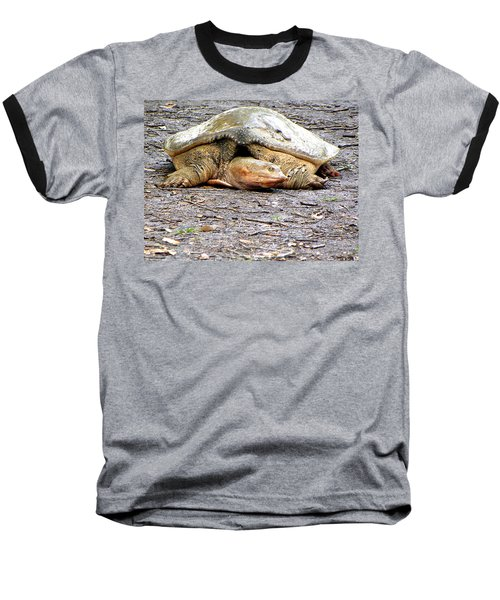 Baseball T-Shirt featuring the photograph Florida Softshell Turtle 000 by Chris Mercer