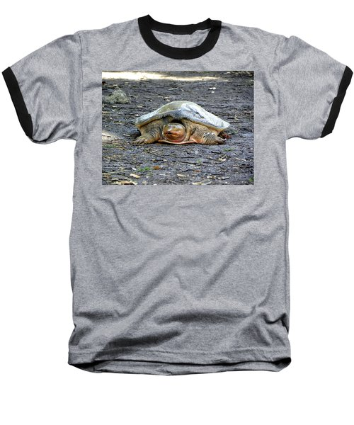 Baseball T-Shirt featuring the photograph Florida Softshell Turtle 002 by Chris Mercer