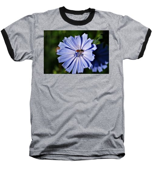 Flower And Bee 2 Baseball T-Shirt by Joe Faherty