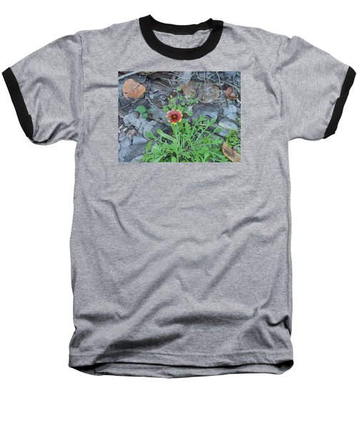 Flower And Lizard Baseball T-Shirt by Kay Gilley