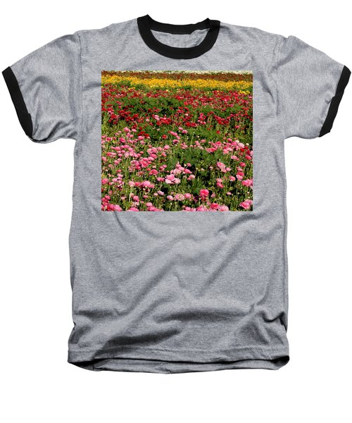 Flower Fields Baseball T-Shirt by Christopher Woods