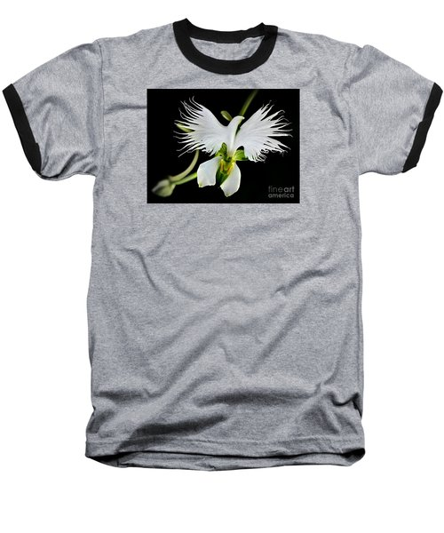 Flower Oddities - Flying White Bird Flower Baseball T-Shirt by Merton Allen
