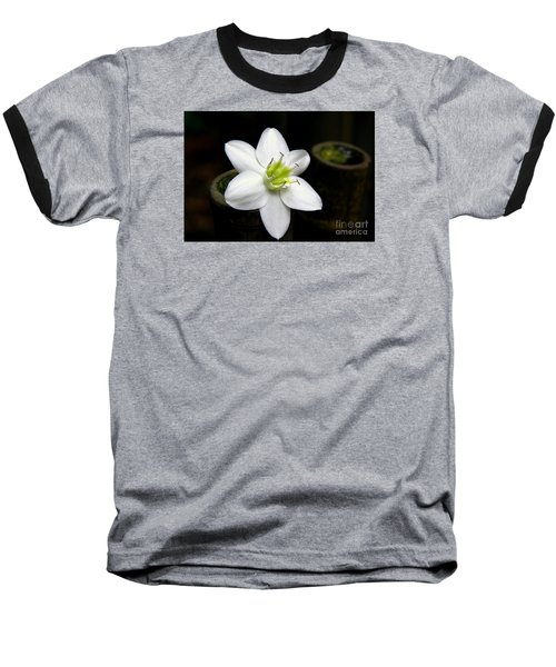 Flower On Bamboo Baseball T-Shirt by Lisa L Silva