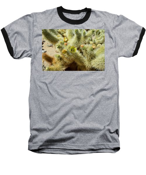 Flowering Cholla Cactus - Joshua Tree National Park Baseball T-Shirt by Glenn McCarthy