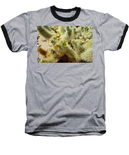 Flowering Cholla Cactus - Joshua Tree National Park Baseball T-Shirt