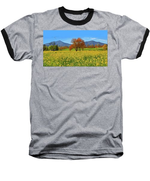 Flowering Meadow, Peaks Of Otter,  Virginia. Baseball T-Shirt