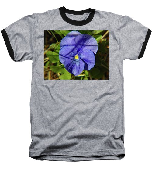 Flowering Pansy Baseball T-Shirt