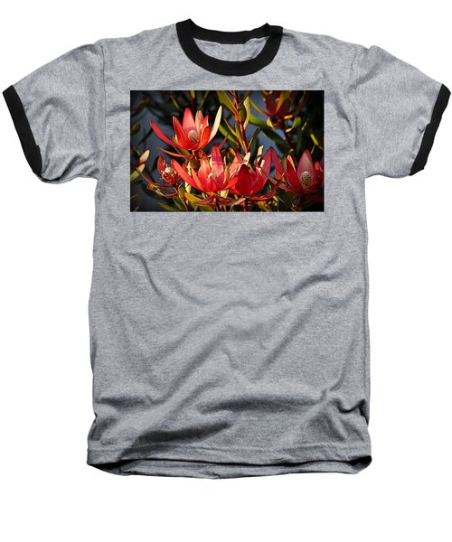 Baseball T-Shirt featuring the photograph Flowers At Sunset by AJ Schibig