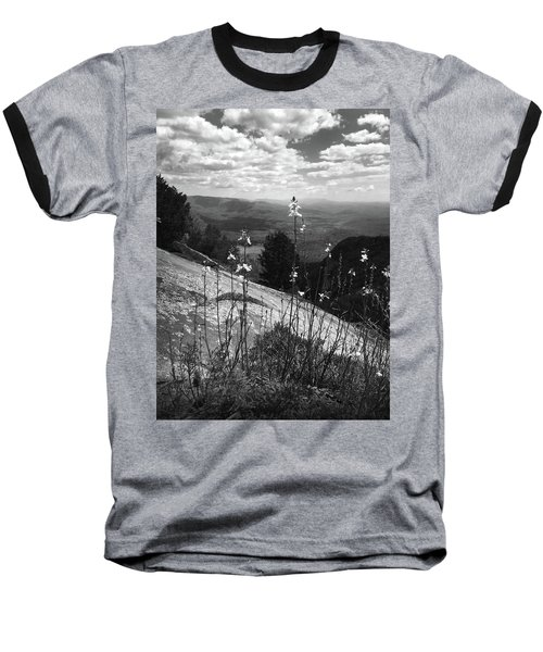 Flowers At The Top Of Table Rock Trail Baseball T-Shirt by Kelly Hazel