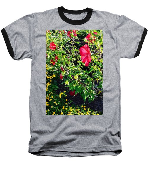 Flowers Of Bethany Beach - Hibiscus And Black-eyed Susams Baseball T-Shirt